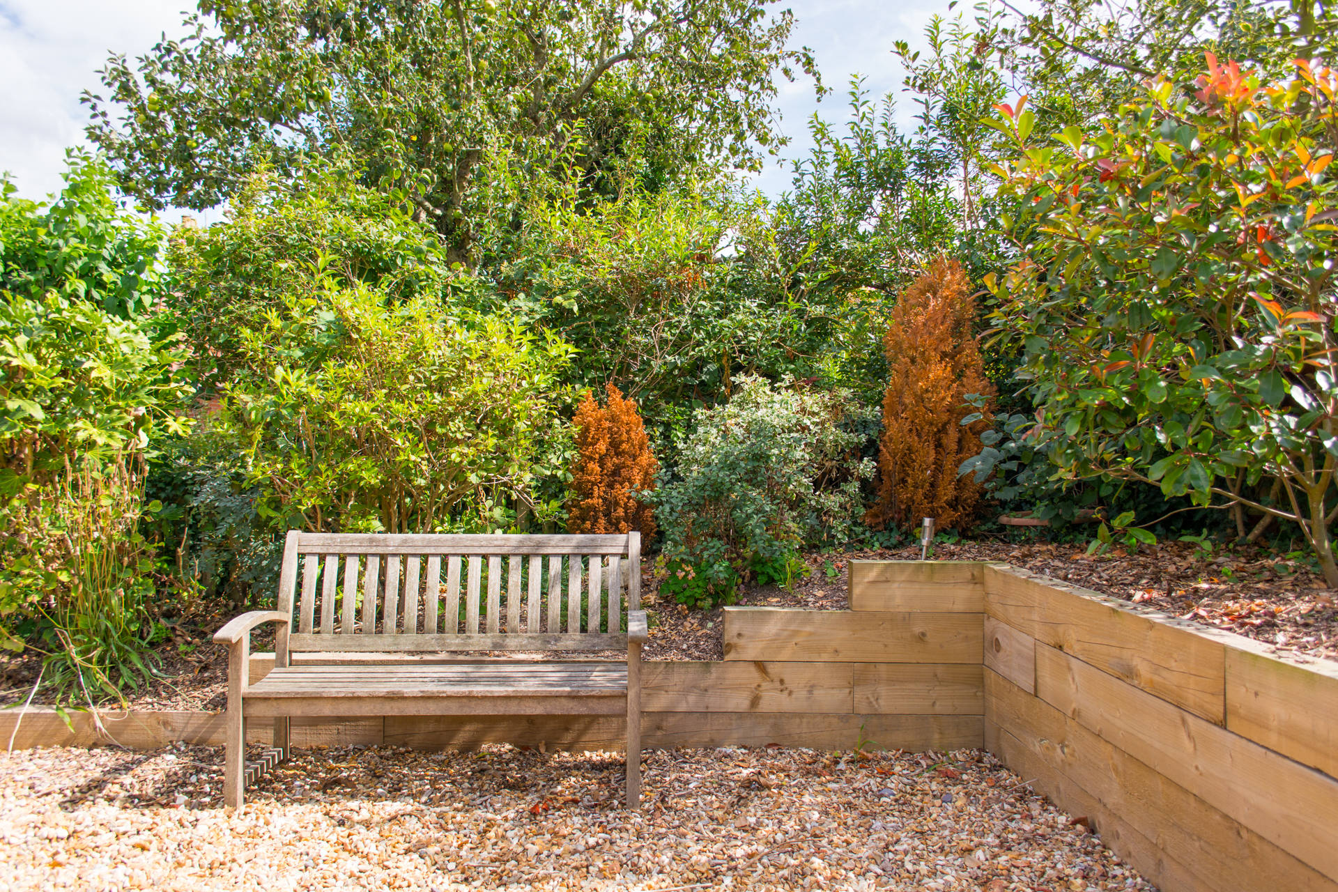 Garden bench with shingle and plant beds.