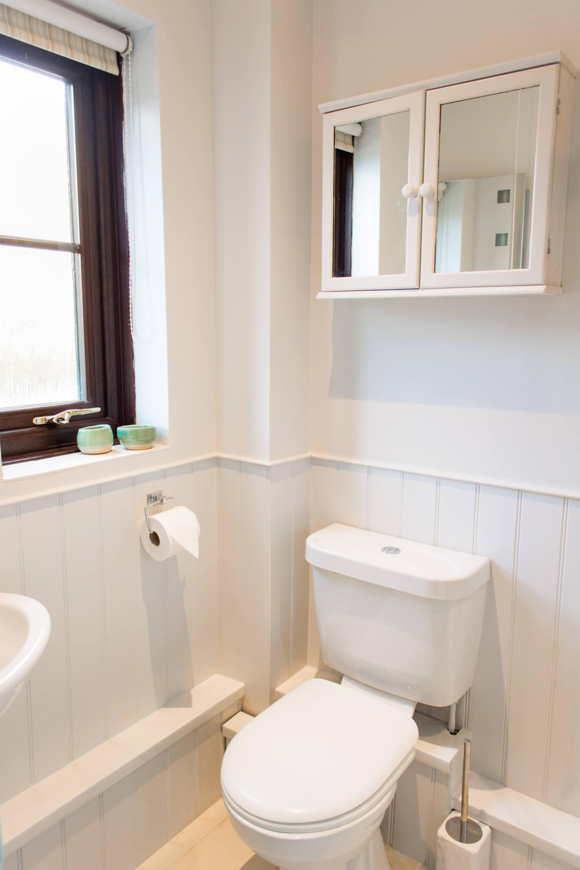 Downstairs bathroom toilet.